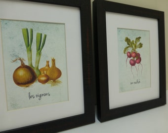 Vegetable  Illustrations,  Fruit Illustrations, kitchen prints , Economical prints, matted, vegetable illustrations, matted art