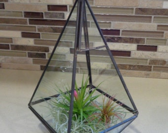"9.5"" Geometric Glass Plant Terrarium-Pyramid FREE Shipping"