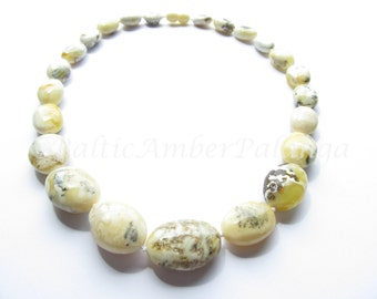 Baltic Amber Bean Shape White Color Beads
