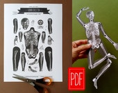 Skeleton PDF paper doll Instant download printable articulated paper puppet DIY decoration digital vintage illustration anatomic