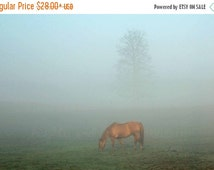 Black Friday Cyber Monday Horse in the Fog Fine Art Photography Foggy Mist Rustic Country Blue Green Brown Ombre Minimalist Modern Tree Farm
