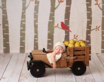 Truck Photo Prop, Newborn Photography Prop, Newborn Photo Prop, Wood Truck, Model T Truck Prop, Truck Prop