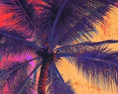 Palm Tree Sunset 2. Palm Trees, tropical canvas print by Irena Orlov