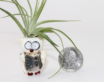 Lampwork Glass Owl Air Plant Holder . Bud Vase . Air Plant Container . by Lori Davidson