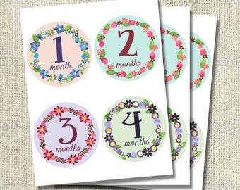 Floral Wreath Monthly Onesie Stickers