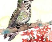 ACEO Limited Edition 1/25 - Garden gateway, Hummingbird in flowers, Summer Anna's garden, Gift idea for bird lovers, Bird art print