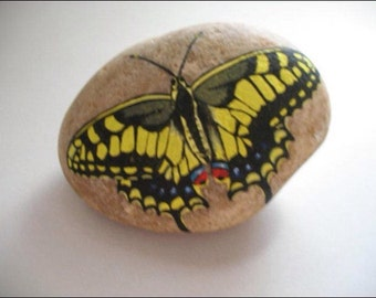 Painted butterfly rock