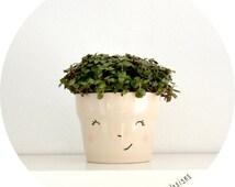 smiling flowerpot - VIC