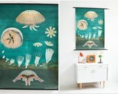 Vintage rustic wall chart, jellyfish poster, ocean print, pull down school chart, educational poster Jung Koch Quentell