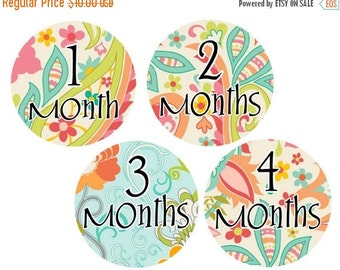 Sale Month Stickers Monthly Baby Stickers Baby Month Stickers Monthly Stickers Milestone Stickers Girl Stickers Baby Milestone Stickers