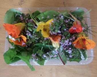 BOXED chemical-free herb salad pack, with edible flowers, England and Wales only