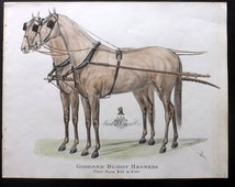 Mark W. Cross & Co. C1900 Rare Horse Print. Goddard Buggy Harness