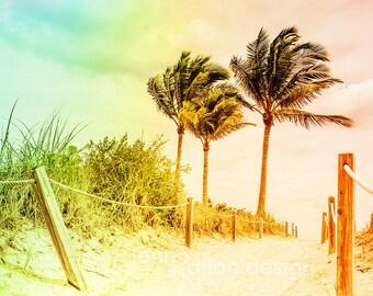 Beach Photography, Beach Path, Beach Trail, Miami Beach, South Beach, Rainbow, Coastal Photos, Palm Tree, Florida, Fine Art Photograph Print