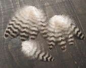 9 Black & White Rooster Feathers ~ Cruelty Free **Use Coupon Code FEATHERS20 and save 20% on all Feathers**