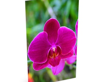 Hot Pink Orchid Card