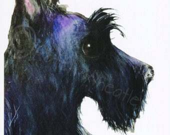 Scottish Terrier Art Print Scottie Dog #133