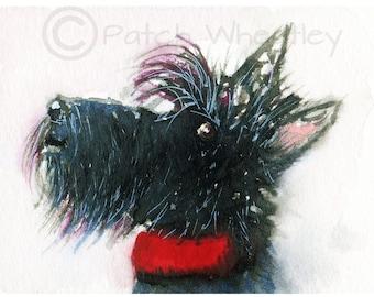 Scottish Terrier Dog  Art Print Scottie Dog #6