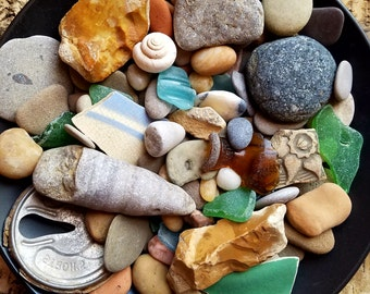 beautiful beach-combing treasurers in a  bowl