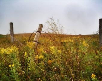 Old fence 8 x 10 photo, Rural Minnesota
