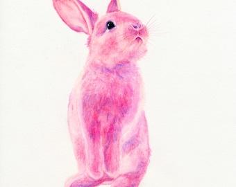 Fine Art Print • Pink Bunnies #1