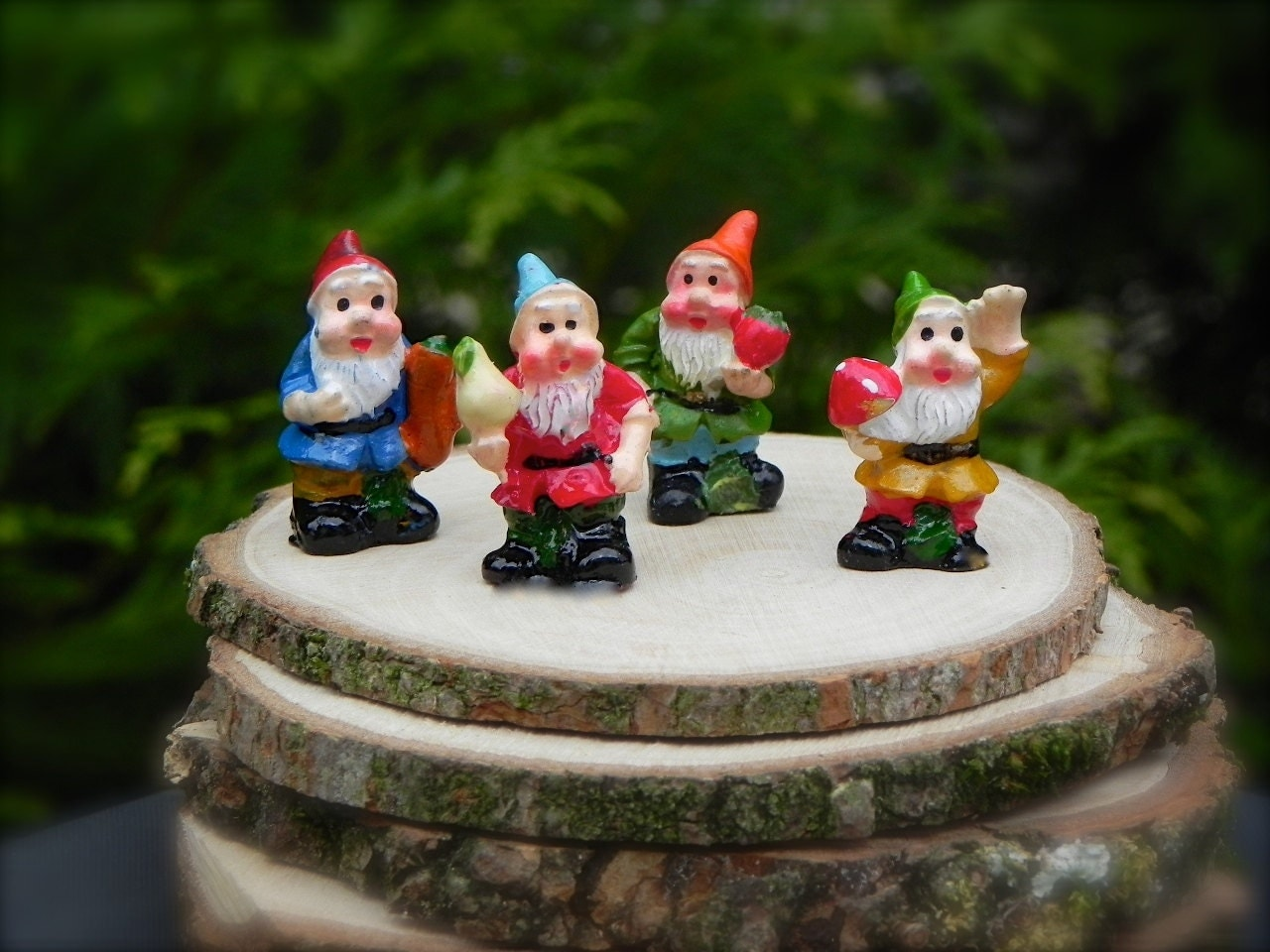 Gnome Garden: Miniature Gnomes Miniature Fairy Garden Accessories