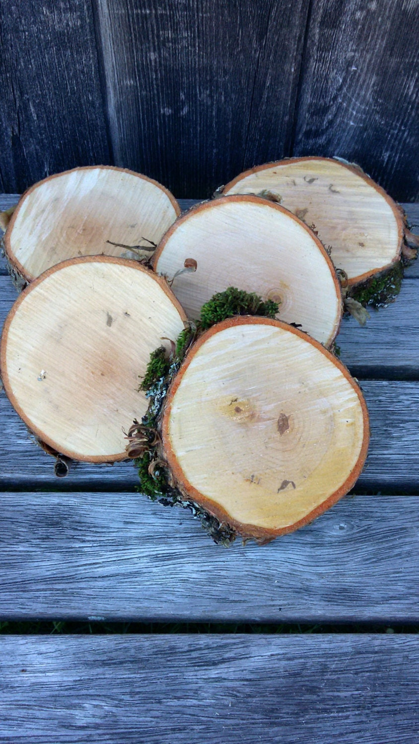 Yellow birch wood quot diameter by thick