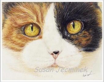 Cat Art CALICO, Unframed (8 x 10 Giclee Fine Print)