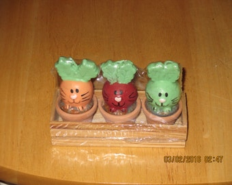 Easter Rabbit Bunny Vegetable Candles Bunny Veggies