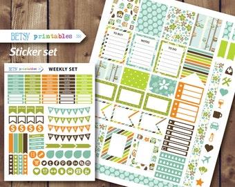 Owl Planner stickers Erin Condren Printable Stickers, planner stickers, Weekly sticker set -  350