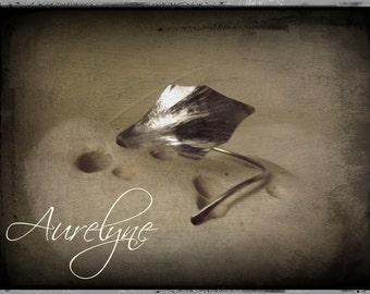 Bracelet stainless steel adjustable Psylle plant dreamlike fairy elven Ivy