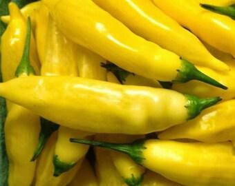 Peruvian Lemon Drop Pepper, Heirloom OP seeds