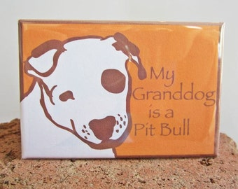 My Granddog is a Pit Bull Magnet
