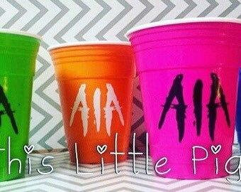 16 oz Insulated Reusable Solo Cup