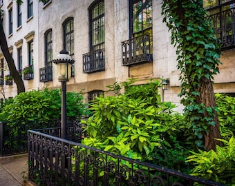 Gardens and townhouses along 23rd Street in Chelsea, Manhattan, New York. | Photo Print, Stretched Canvas, or Metal Print.