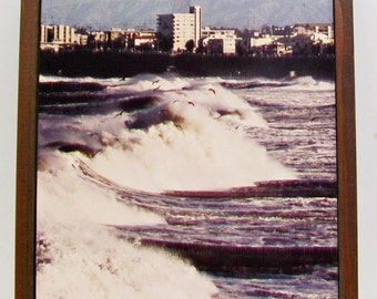 Signed Photograph By Eda Rogers Storm Waves Gulls INNERSPACE & OUTER VIEW Walnut Wood Framed Art Wall Decor