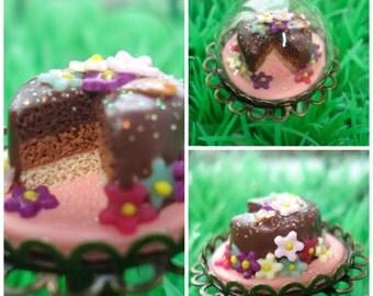 My treasure of chocolate cake