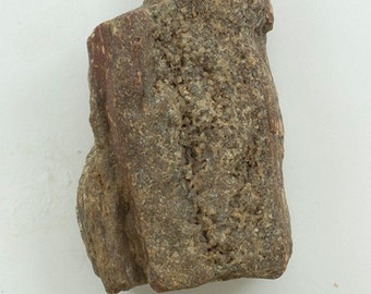 "Petrified Wood, 63g, Texas, Fossilized Wood, 2.25 x 1.75 x .75""  (57 x 46 x 20mm)"
