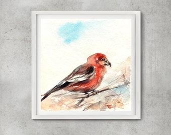 ORIGINAL Watercolor Painting of Bird, Crosbill Bird, Watercolour Art, Bird Art, Bird illustration