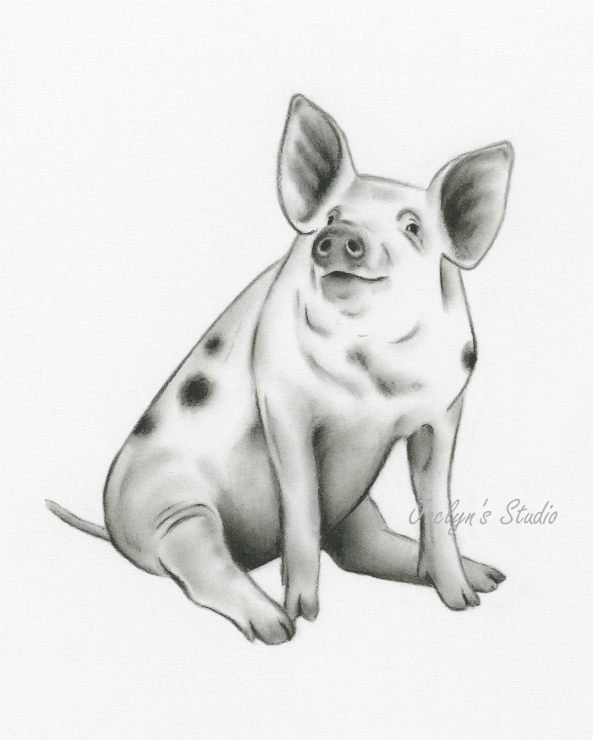 Uncategorized Baby Pig Drawing spotted pig art charcoal drawing 810 pig