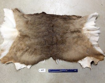 Soft Tanned Whitetail Deer Half Hide #3