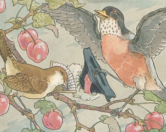 Vintage children's book illustration art robin bird cherries cherry tree digital download printable instant image