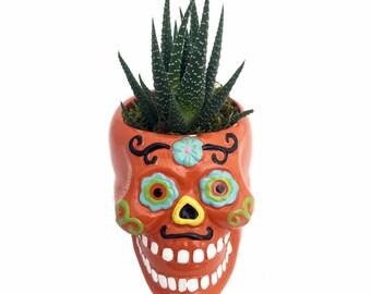 Orange Sugar Skull Ceramic Planter with Live Plant - 4.3 x 5 in