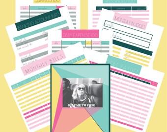 Modern Budget Printables (pink)