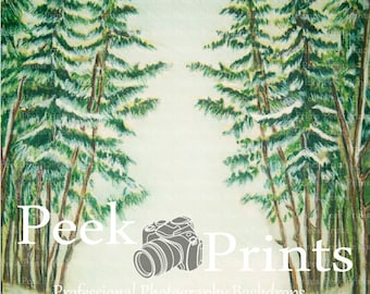 3ft.x3ft. In the Woods - Snow Covered trees - Photography Backdrop- Perfect for the Holidays! - Christmas Backdrop- Christmas Background