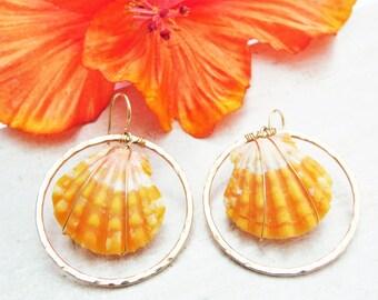 Sunrise Shell Earrings, Gold Sunrise Shell Earrings, Sunrise Shell Hoop Earrings, Yellow Sunrise Shell Earrings, Large Sunrise Shell Hoops