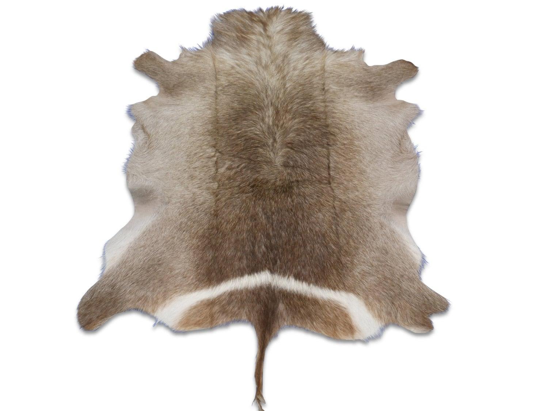 Natural Large Waterbuck Skin Rug Wb01 African Antelope Hides