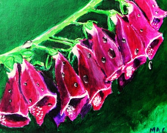 Foxgloves -- Original Art