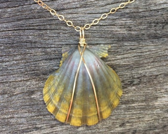 Yellow and blue-green sunrise shell necklace