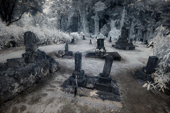 Gravestones Honohina Cemetery Hawaii