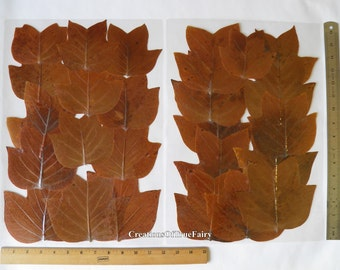 Leaf Placemats Etsy